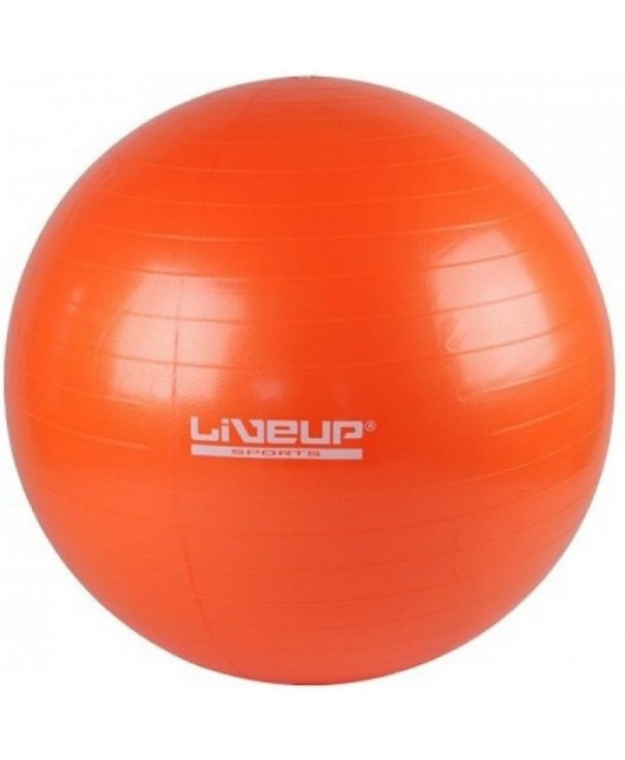 Фитбол GYM BALL 55 см LS3221-55o