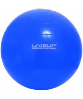 Фитбол GYM BALL 65 см LS3221-65b
